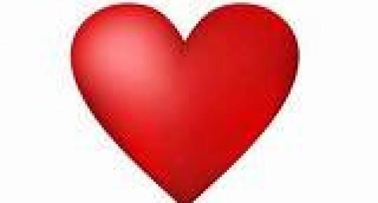 La fonction circulatoire… entre cœur et sang !